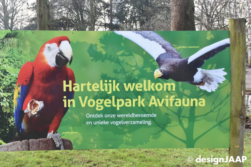 photography Avifauna Bird Park